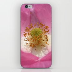 pink poppy XI iPhone & iPod Skin