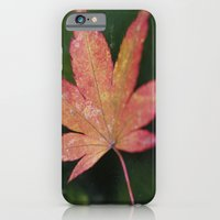 iPhone & iPod Case featuring Japanese Maple Leaf 2 by Michelle Chavez