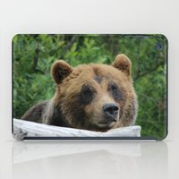 Alaskan Brown Bear :: The Grizzly iPad Case
