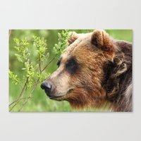 Smokey Sniffing The Bree… Canvas Print