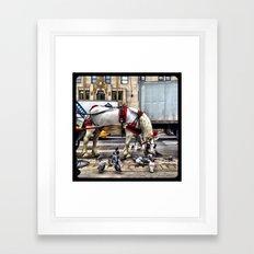 We get along like pigeons and horses. Framed Art Print