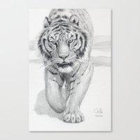 Tiger Walking C036 Canvas Print