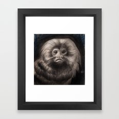 Golden Lion Tamarin Framed Art Print