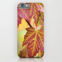 iPhone & iPod Case featuring Maple Leaves by Captive Images Photography