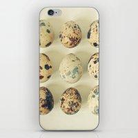 Quail Eggs iPhone & iPod Skin