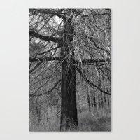 + Tree Canvas Print