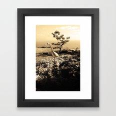Master in Sepia Framed Art Print