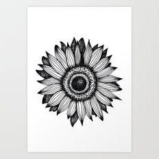 Sunflower Drawing Art Print