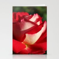 Two-Tone Rose Stationery Cards