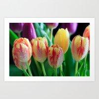 Sing For Spring  Art Print