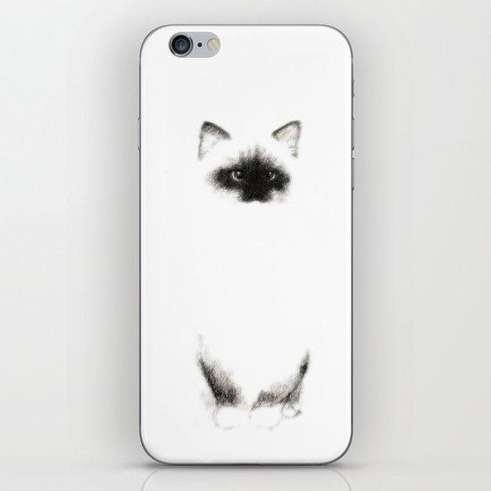 Angora Siamese Cat - Chat Siamois Angora iPhone & iPod Skin