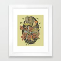 Robins And Warblers Framed Art Print