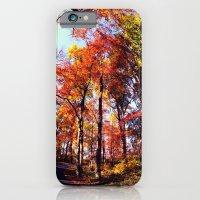 Fisheye Fall II  iPhone 6 Slim Case