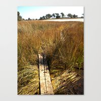 Beaufort, SC Canvas Print