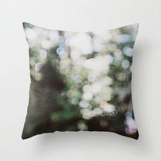 Warm Summer Day Throw Pillow