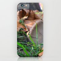 Feather in th Park iPhone 6 Slim Case