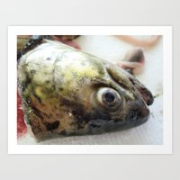 Passion of the Fish 01 Art Print