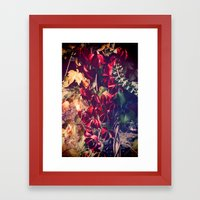 Red Vine Framed Art Print
