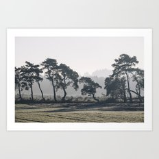 Trees lining a frosty field on a cold morning. Norfolk, UK. Art Print