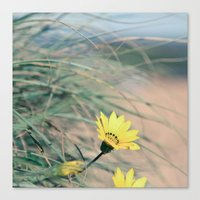 Hidden Flower Canvas Print