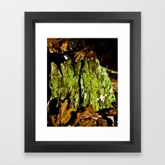 Mountain Moss Framed Art Print