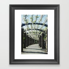 Southampton East Park, Wisteria Framed Art Print