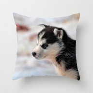 Throw Pillow featuring SiberianHusky20150901 by Jamfoto