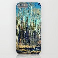 Aspens in Winter  iPhone 6 Slim Case