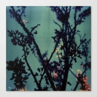 Polaroid Spring Canvas Print