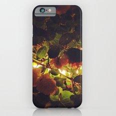 Night Flowers iPhone 6 Slim Case