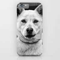 iPhone & iPod Case featuring Crooked Smirk by MistyAnn