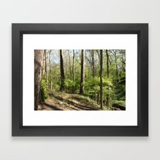 Another trail leading nowhere, including litter this time Framed Art Print