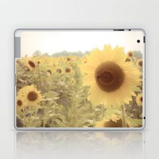 Sunflower Dreams Laptop & iPad Skin
