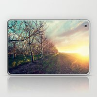 In The Orchard Laptop & iPad Skin