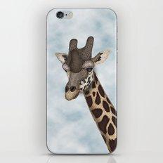 Giraffe Fun iPhone & iPod Skin
