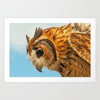 OWL EYED Art Print