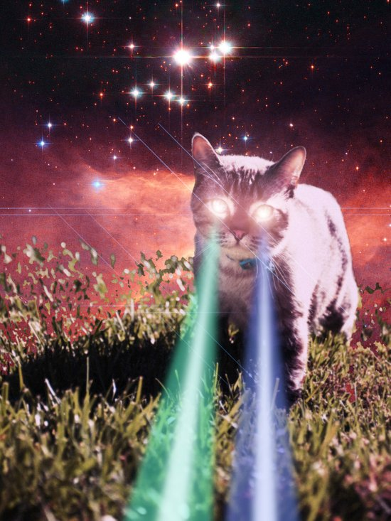 Mega Space Cat Rising Art Print