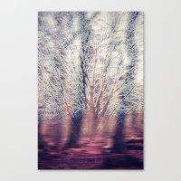 Where Dreams Run Free Canvas Print