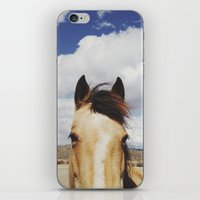 Cloudy Horse Head iPhone & iPod Skin