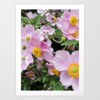 delicate blossoms Art Print