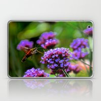 The Hummingbird Moth Laptop & iPad Skin