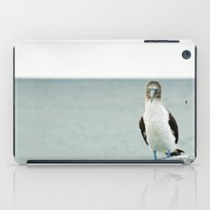 blue-footed booby iPad Case