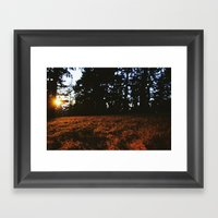 Fall's Last Light Framed Art Print