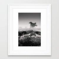 Tree In Marshland - Blac… Framed Art Print