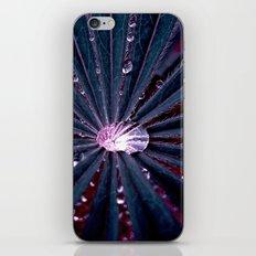 water pearl XIX iPhone & iPod Skin