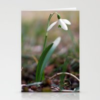 Snowdrop -  Spring Flower Nature Macro Photography Stationery Cards