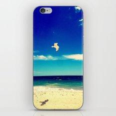 Lonesome Seagul iPhone & iPod Skin