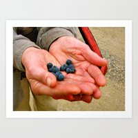 Grandma's Blueberries  Art Print