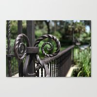 Curled Up And Twisted Canvas Print