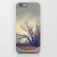 Family Tree  iPhone 6 Slim Case